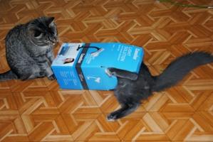 Коробка на одного