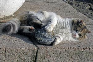 Каменная игрушка