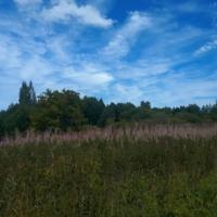 Бывший хутор