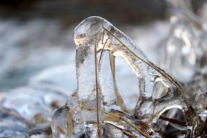 Ice shield
