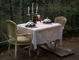 Всё готово для романтического ужина в лесу, но...