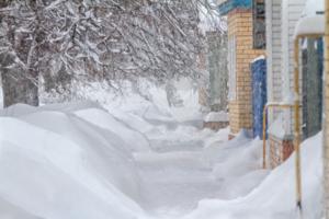 Что нам снег )