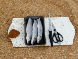 улов для пикника