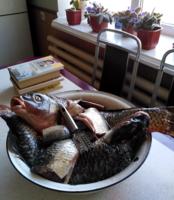 Рыбка на ужин