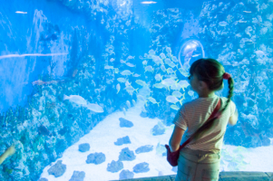 В океанариуме