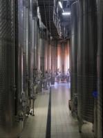 Альма - современное изготовление вина