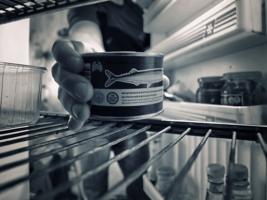 Мир глазами холодильника