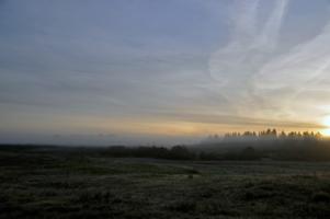 Рассвет. Туман.