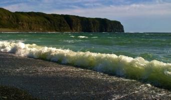 Волна в полуденном свете