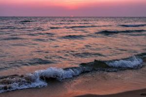 Заплывшее за океан