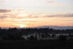 Вечерний туман 😍
