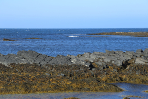 Холодное синее море