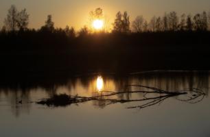 ...Спускалось солнце каждый раз,медленно но верно.