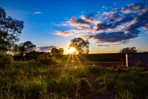 Вечернее солнце в мае