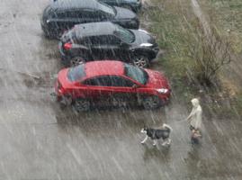 ...гулять в ЛЮБУЮ погоду приучил))