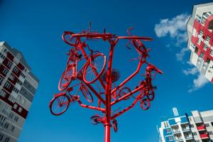 Велосипеды прилетели