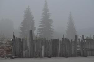 Старый серый забор