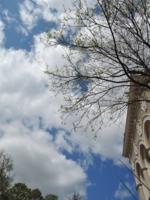 Дотянуться до облаков...