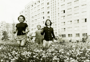 пора цветению