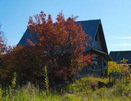 Деревенский заброшенный дом