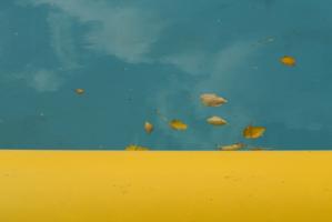 Голубой и желтый.