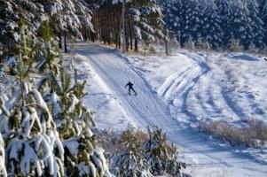 На лыжной трассе...