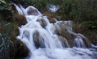 В краю молочных рек