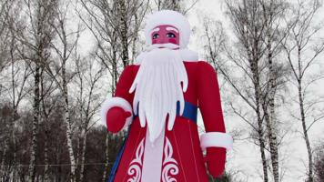 Санта в берёзах.