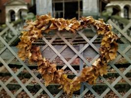 Осеннее преображение кольца...