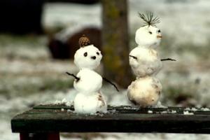 Сколько снега- такие и снеговики.