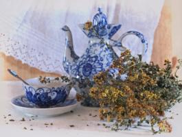 Чаепитие со зверобоем