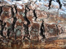 Скалы над рекой