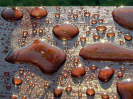 янтарный дождь