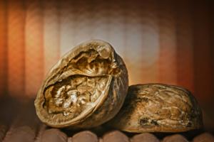 Ореховый панцирь