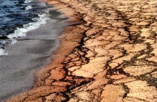 Волны пишут на песке...