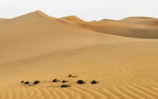 Одинокий странник в пустыне