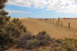 Долгая дорога к дюнам