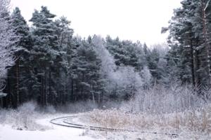 Зимняя колея.