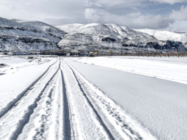 По белому снегу