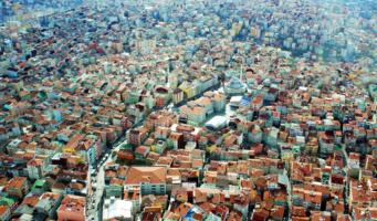 Разноцветье города