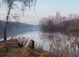 На тихой речке