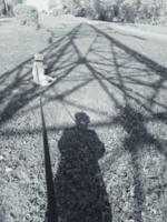 В тени большой тени