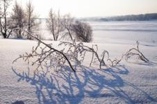 Снежные оковы