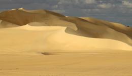 Волны могучей пустыни