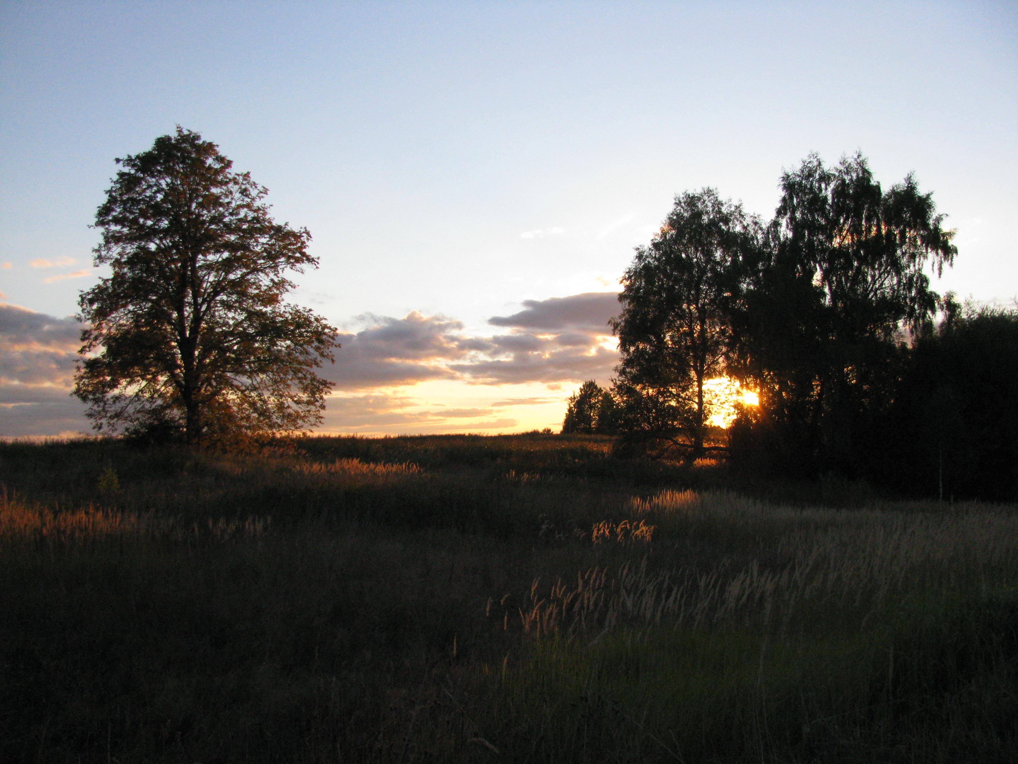 половые фото деревня моя деревянная дальняя ряд выглядит