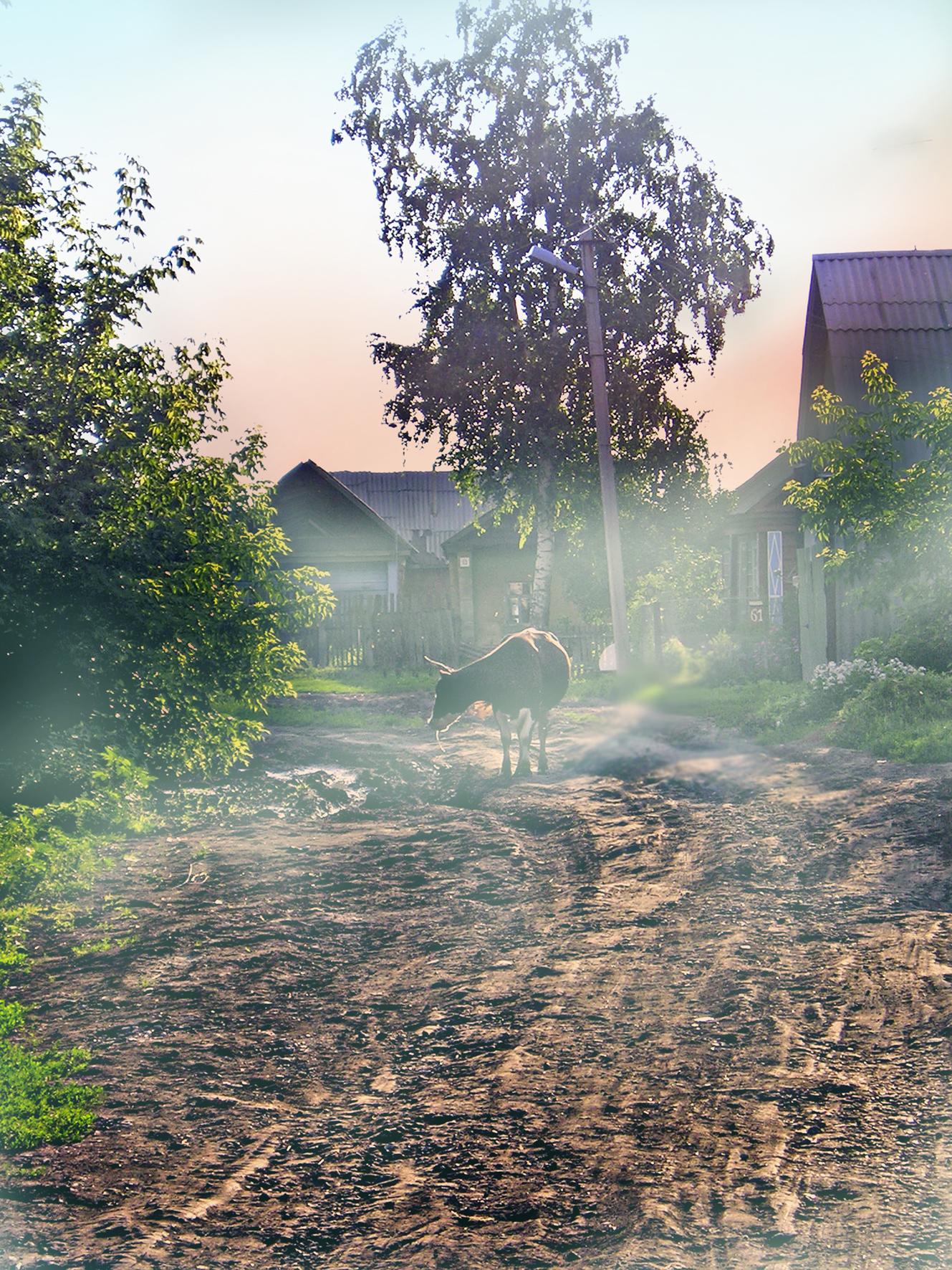 картинки вертикальные утро в деревне разгоняются неимоверных скоростей