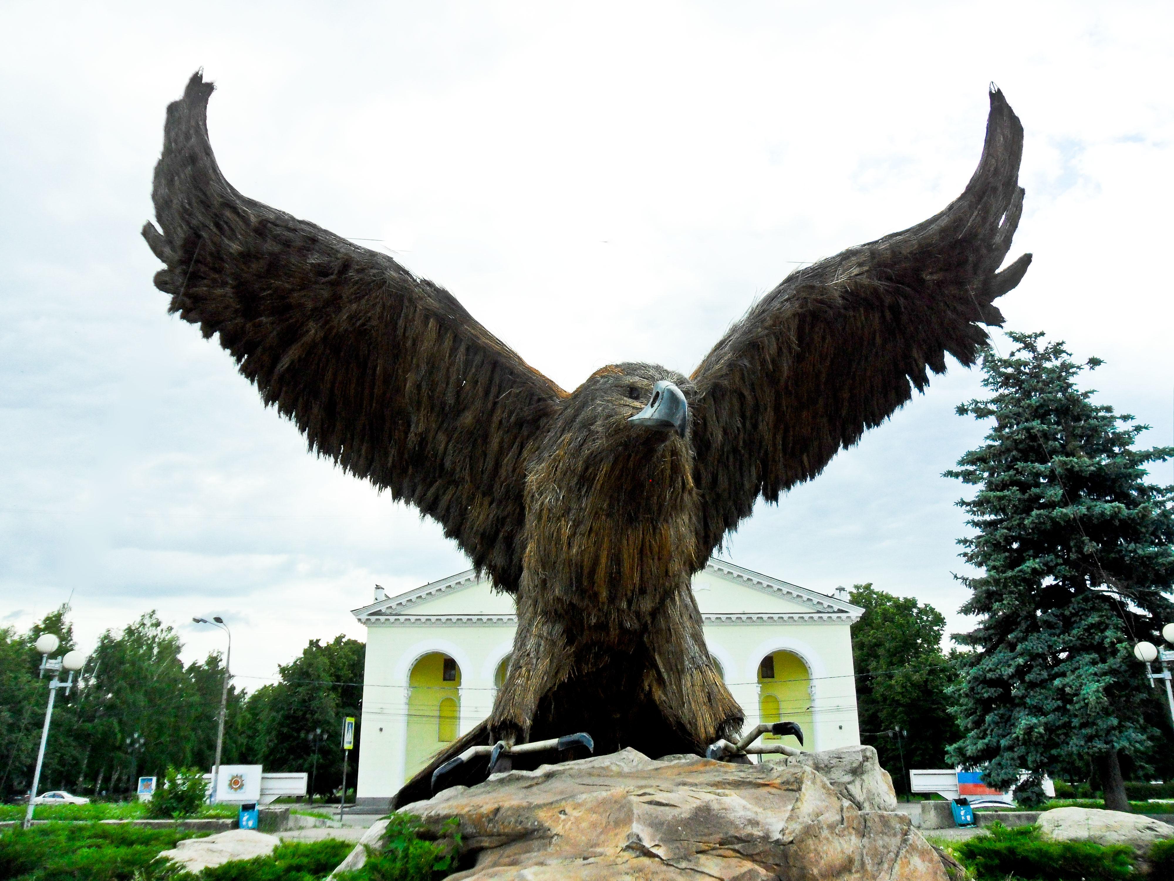 Город орел картинки орел, оригинальные цветами