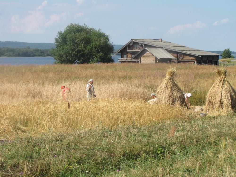 Белорусские деревни фото производители