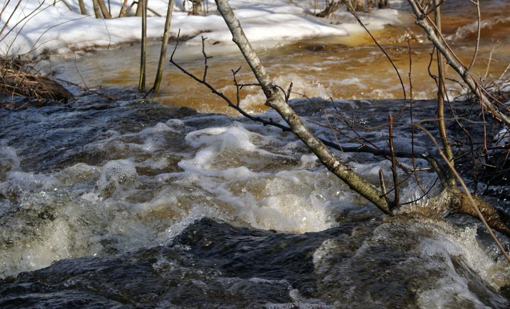 Бегут ручьи картинка