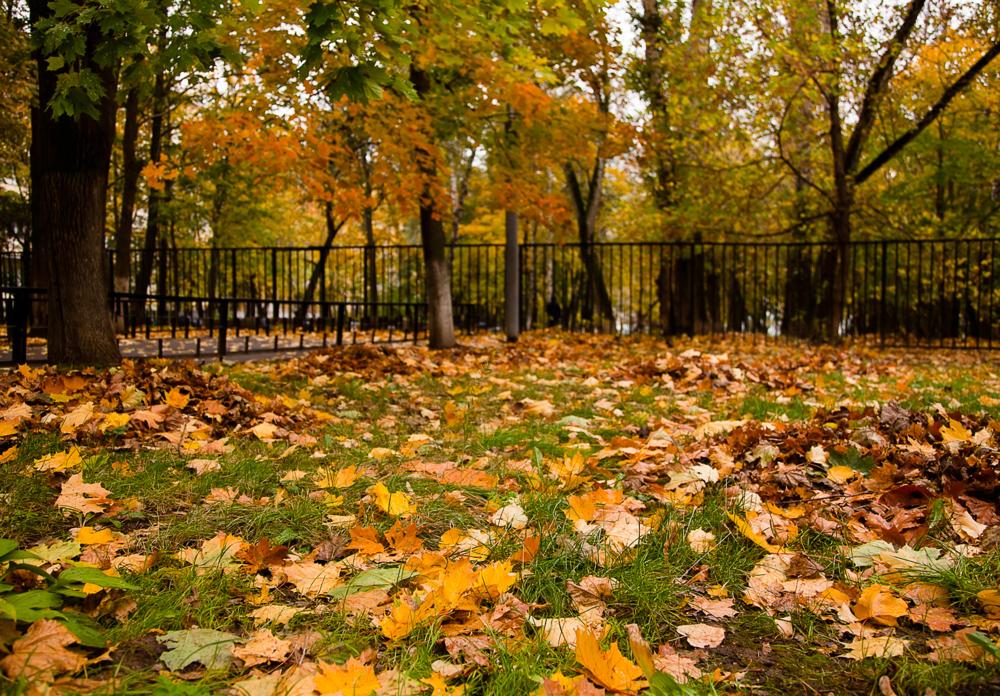 сериала татьянин картинки осень на дворе стильные вся